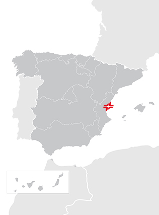 Puerto Burriana
